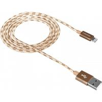 Дата кабель USB 2.0 AM to Lightning 1.0m Gold CANYON (CNE-CFI3GO)